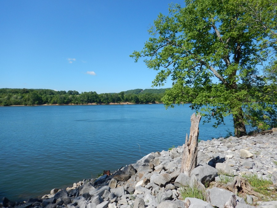 views of the Tennessee River